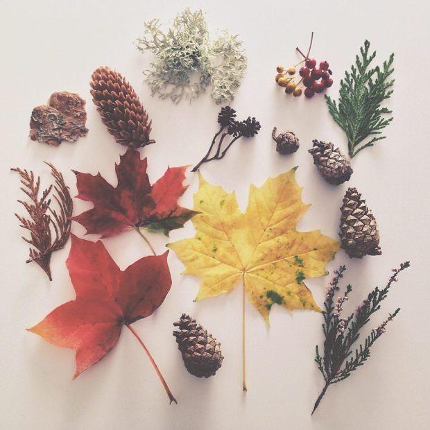 autumn-treasure-hunt