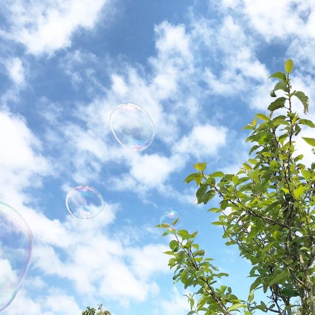 Garden Bubbles.JPG