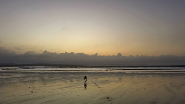 Sunset Beach Dog.JPG