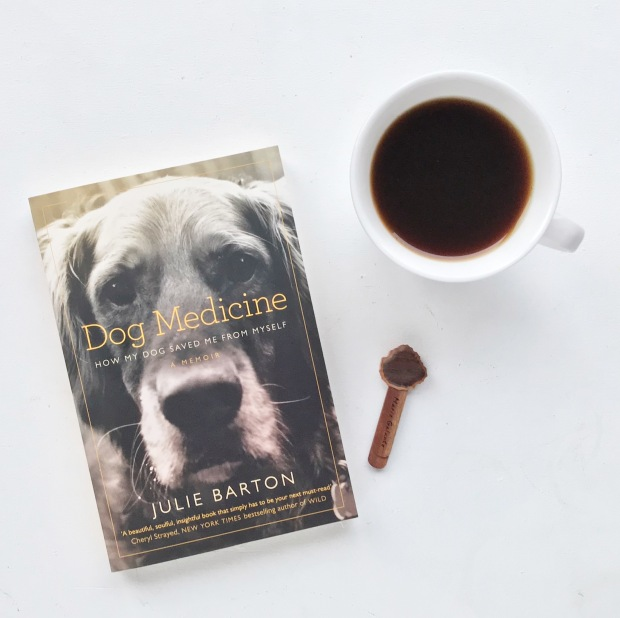 Dog Medicine Book.JPG