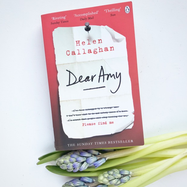 Dear Amy book