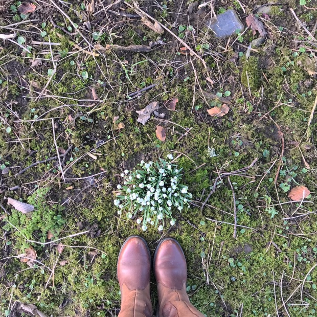 Feet in Snowdrops