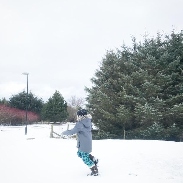 Snowy Day February