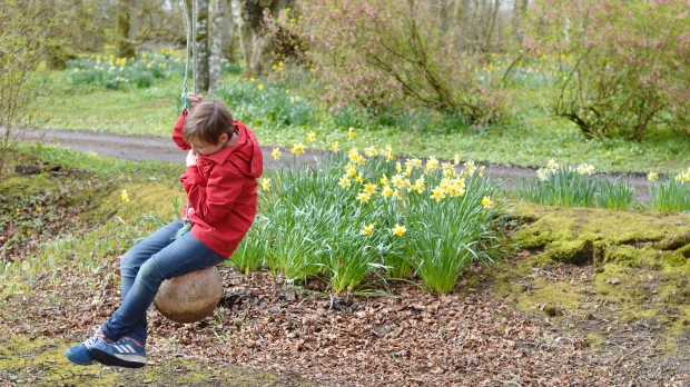 Daffodil Swing Thrumster