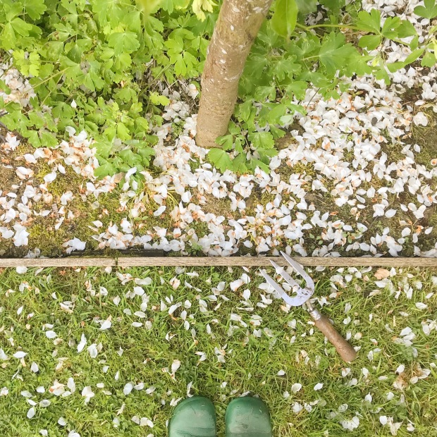 Weeding in Blossom